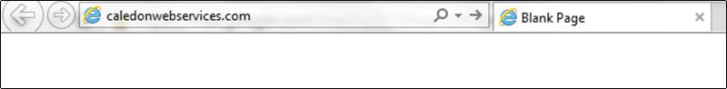 browser bar